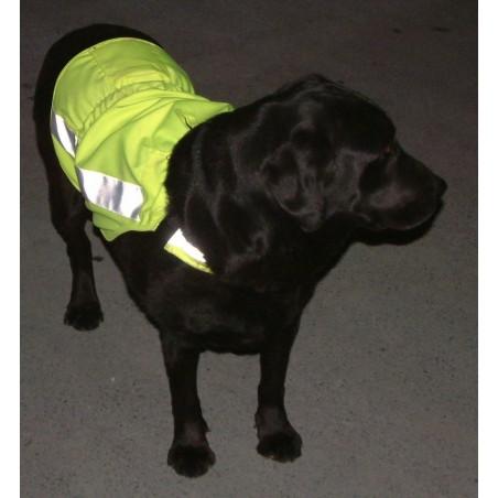 Gilet ajustable haute visibilité pour grand chien