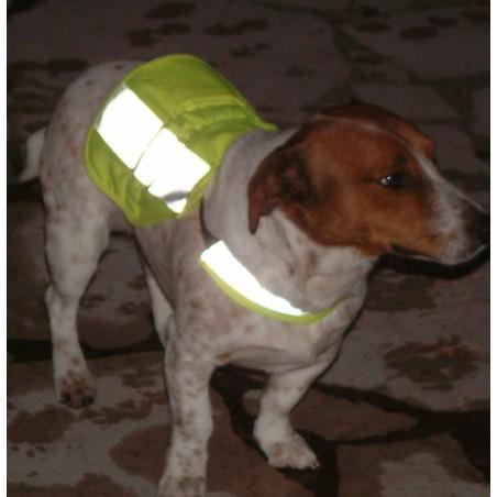 Gilet ajustable haute visibilité pour chien